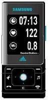 Samsung SGH-F110